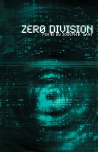 Book cover of Zero Division